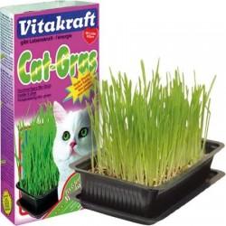 VITAKRAFT Cat Gras - trawa dla kota 120g