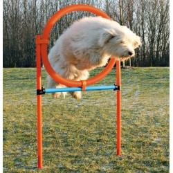 Obręcz do skoków dla psa - Agility