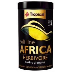 Tropical Africa Herbivore S