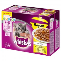 Whiskas 12x85g Junior Rogout w galarecie