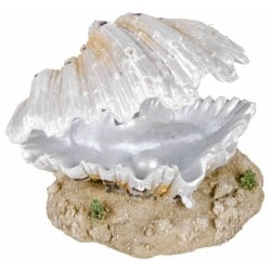 Dekoracja muszla z perłą 9cm