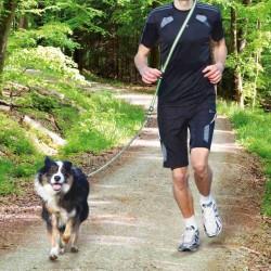 Smycz do joggingu, 1.33–1.80 m/20 mm, szaro/zielona