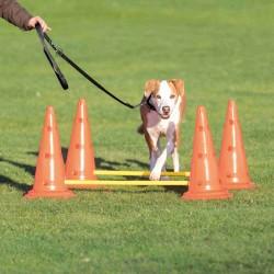 Tor przeszkód dla psa dog activity, zestaw 2 części, o 30 × 50 cm 100 cm, pomarańczowy/żółty