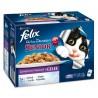 Felix 12x100g So gut SENIOR smaczne mięso w galarecie